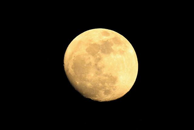 pre super moon (5/4)