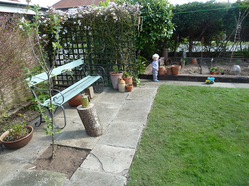 Patio and apple tree
