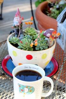 kaffee klatche