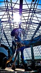 JAPAN EXPO 2011 1100989