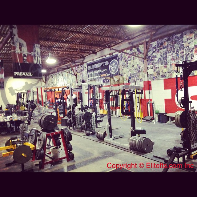 Elitefts� Gym Pic of the Day