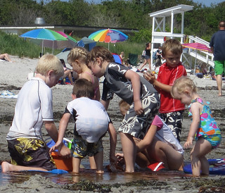 Beach Building Crew
