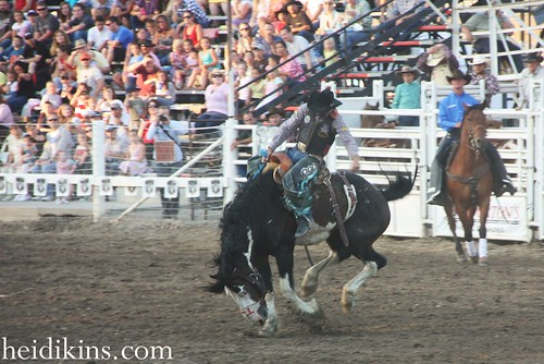 Strawberry Days Rodeo_June 2012 (16)
