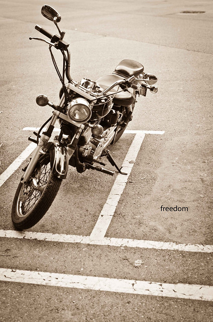 268/366: freedom