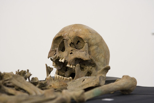 Crossrail archaeology exhibition