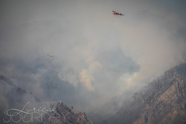 Alpine Quail Fire (16 of 33)