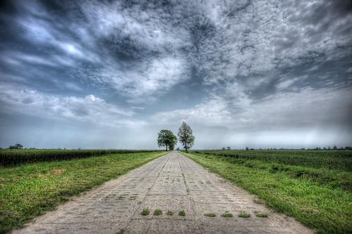 road summer tree nature clouds canon eos poland polska natura efs hdr droga 1022 przyroda marcin chmury niebo lato drzewa 40d colorphotoaward gawronski