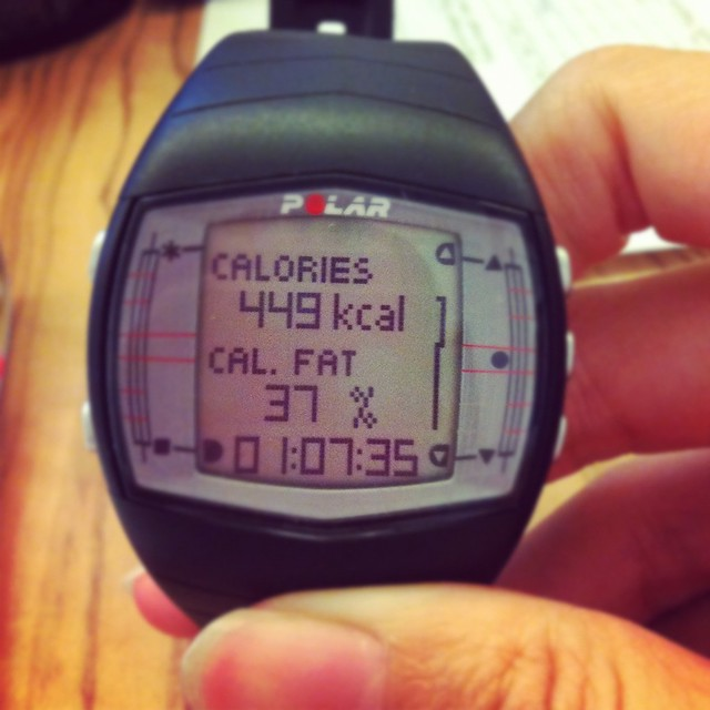 calorie counter - fitology