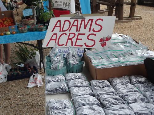 Petersburg Farmers Market July 14, 2012 (12)