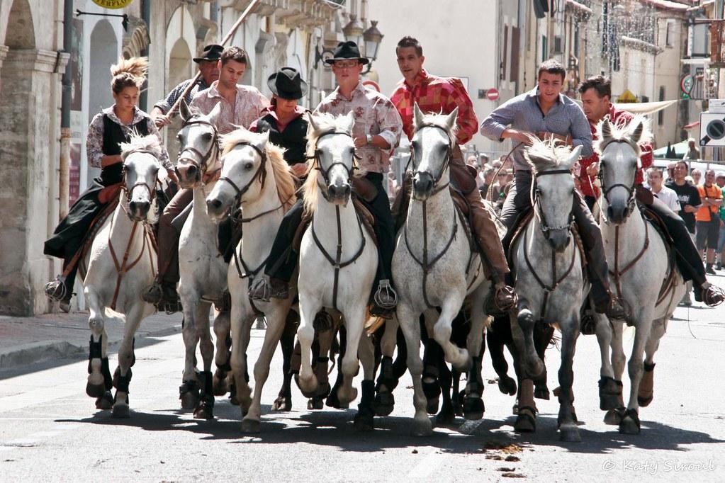 Rencontres equestres mediterraneennes 2017
