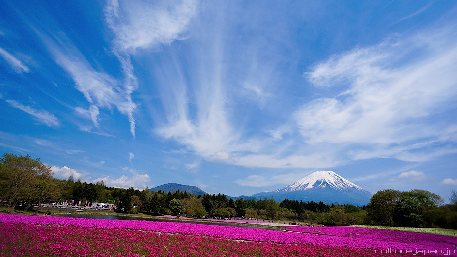 Mt Fuji Caves