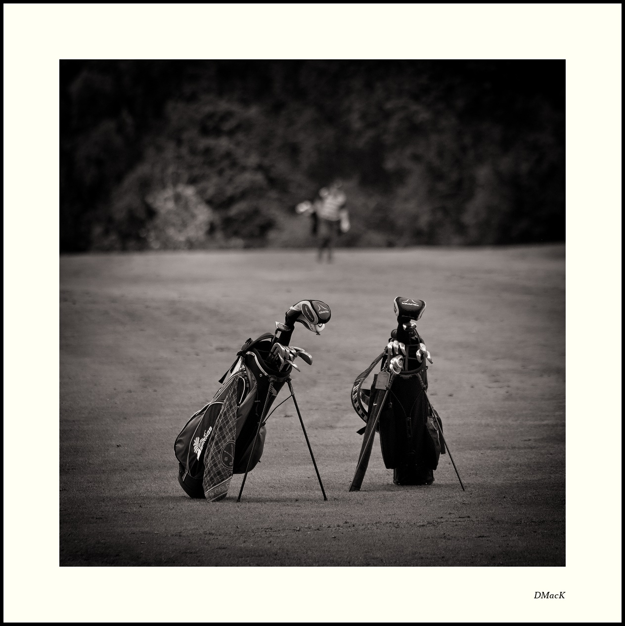 Golfing Buddies - Sports Action Photography