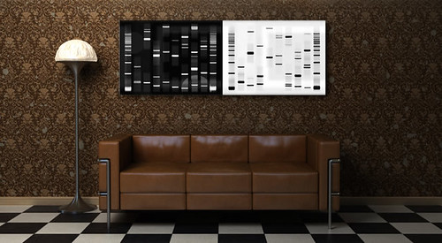 Unique Custom DNA Art Installation