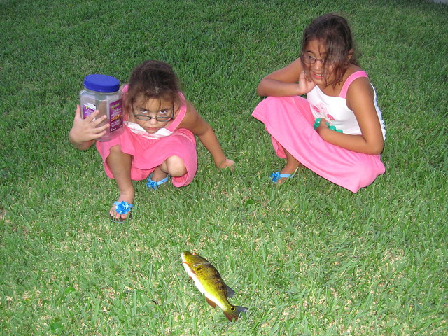 Nietas with Peacock Bass 20120726