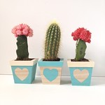 Prickled Heart Planter Trio Tutorial by Fabric Paper Glue