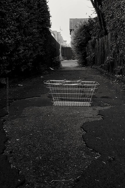 Basket Alley (365#215)