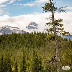 Late Summer Snow on Mount Peskett