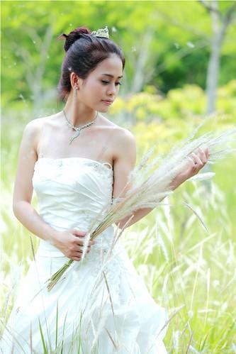 [フリー画像素材] 人物, 女性 - アジア, 人物 - 草原, ウエディングドレス ID:201211102200