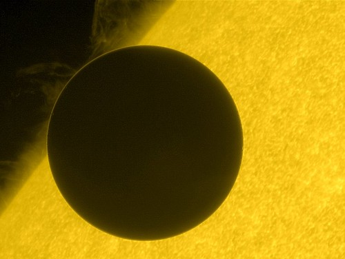Hinode's view of the transit of Venus