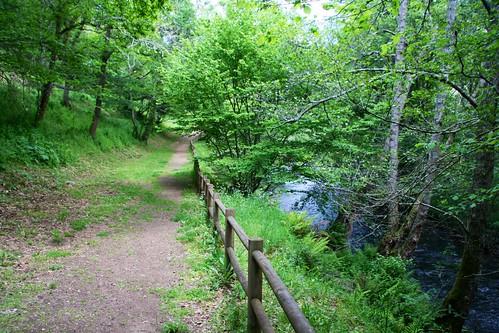 Río Deza en Carboeiro