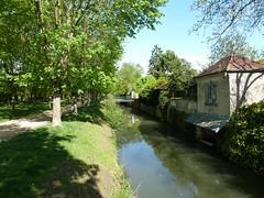 Promenade ombragée - Photo of Mouroux