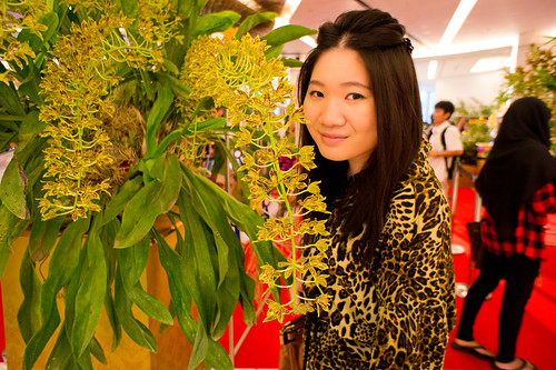 DSC03901Orchid Festival @ Siam Paragon