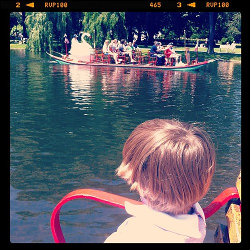 Checking off the bucket list-swan boat ride in Boston Gardens