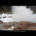 Steamboat Geyser ~ splashing and steaming closeup