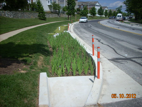 Photo set of White Oak Green Streets Project