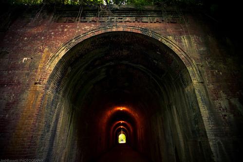 166/366 - Dalecarlia Tunnel (Capital Crescent Trail)