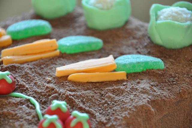 Veggie Patch Cake