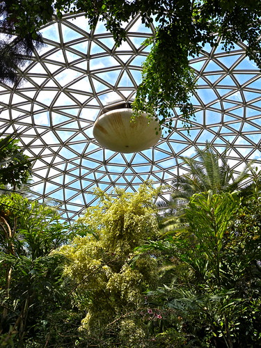 Bloedel Conservatory - Vancouver
