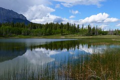 Middle Lake at Bow Valley Provincial Park