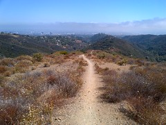 Top of Sullivan Canyon Bike Path Overlooking LA