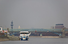 Pushkinsky Bridge