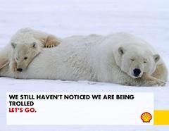 polar bear(0.0), grizzly bear(0.0), animal(1.0), arctic(1.0), polar bear(1.0), mammal(1.0), bear(1.0),