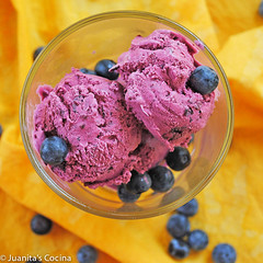 BlueberryIceCream-1024x1024-2