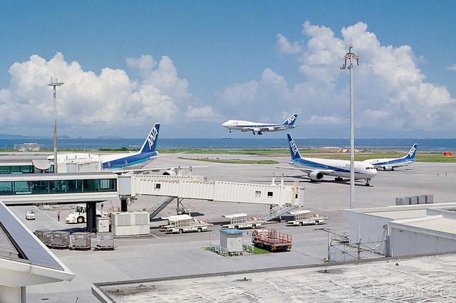 ANA B747の着陸 / ANA B747 Landing
