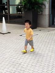 朝散歩 とらちゃん (2012/7/29)
