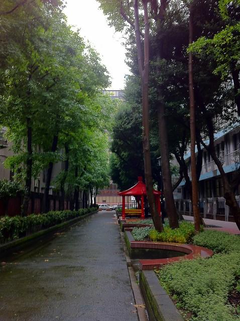 教廷大使館後面的公園