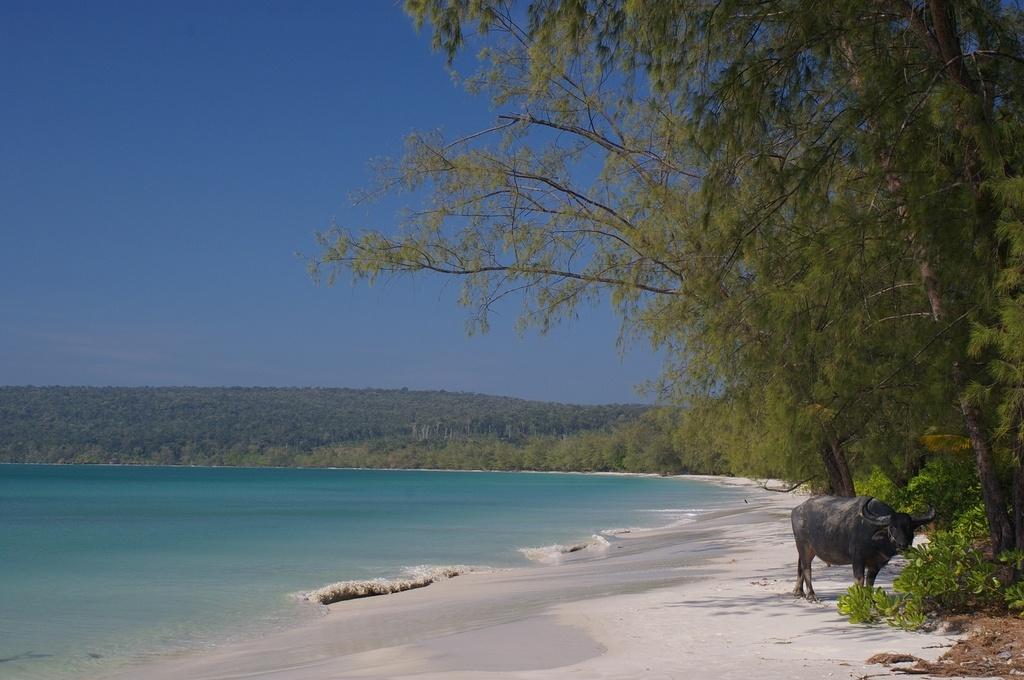 лонг сет пляж