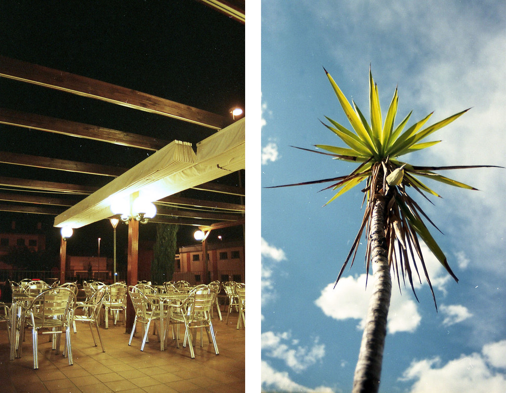 restaurant + plant