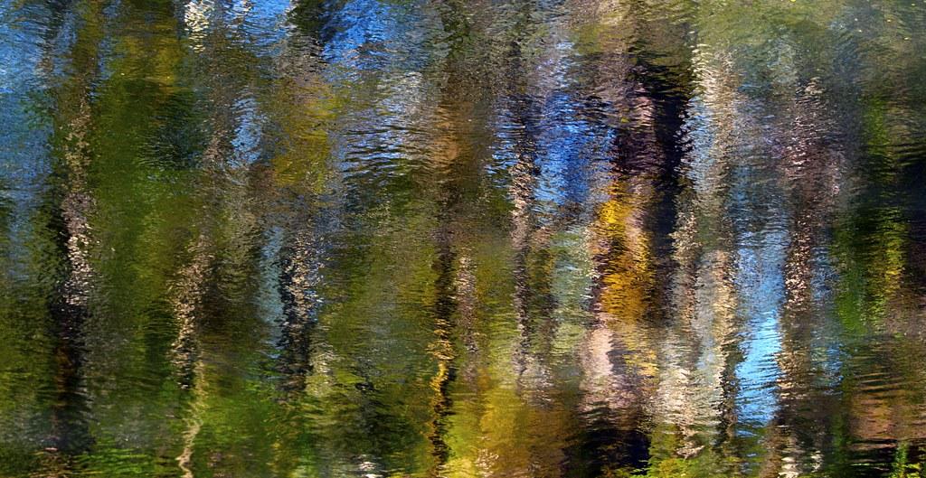 Abstract: Vivid 12