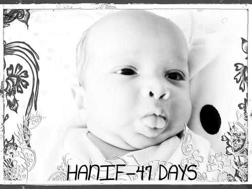 hanif-frameBFA1