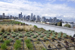 empirestatefuture posted a photo:	This green roof--on top of an infill housing project in the Capitol Hill neighborhood--affords a spectacular view of the downtown skyline.