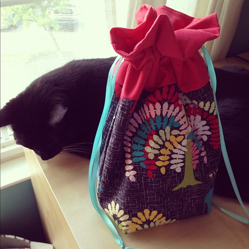 One more @jenib320 drawstring bag. Michael's not impressed but I am.  #sewing #cats #crazycatlady