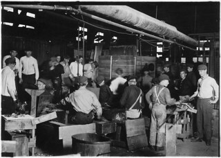Scene in More-Jonas Glass Co. Small boy in center of photo with cap pulled down over face was undoubtedly under 14 years of age, November 1909