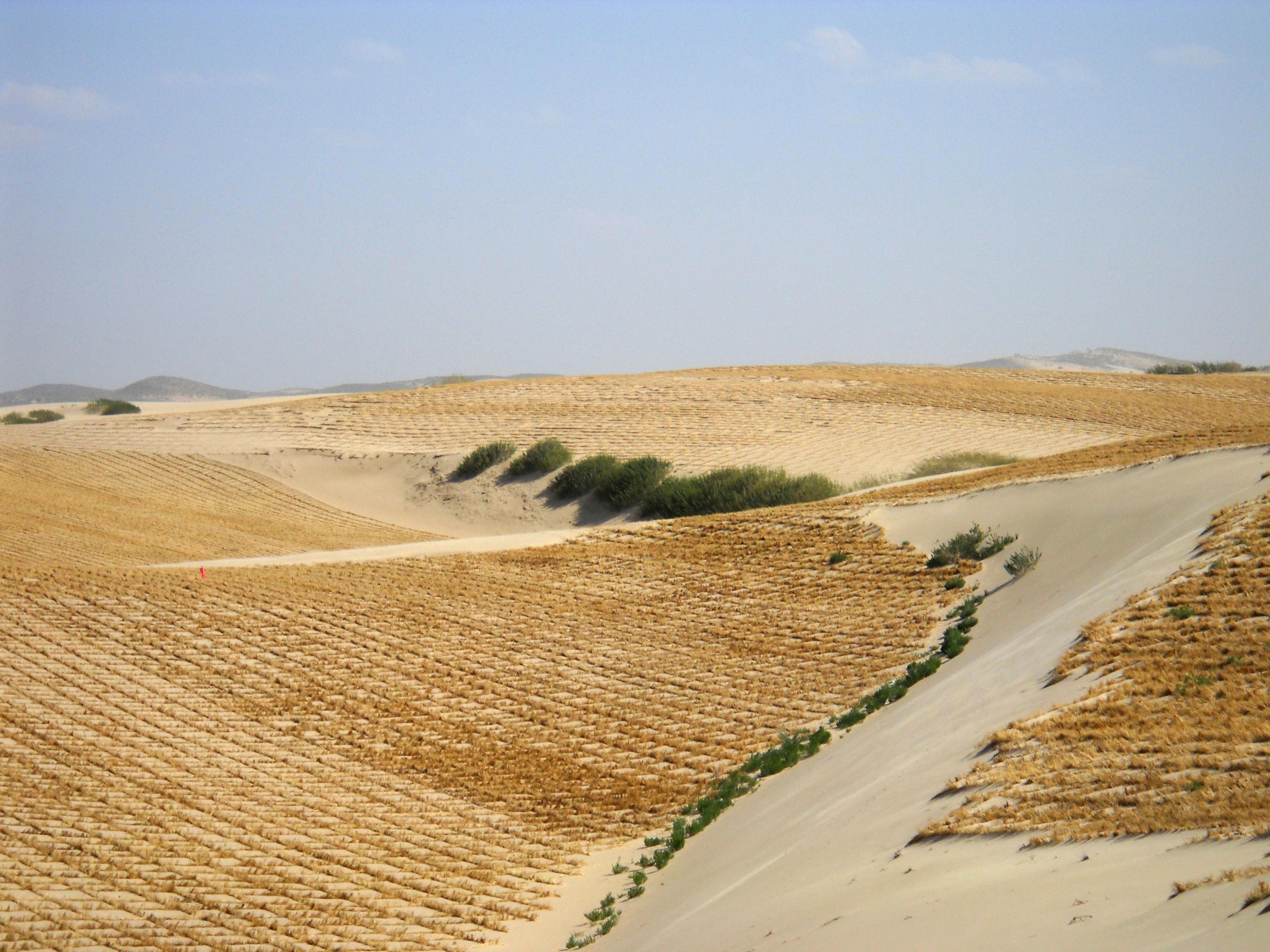 desertification - photo #9