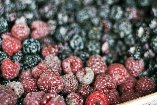 raspberry bokeh.