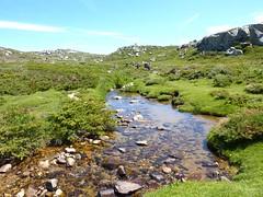 Le long du ruisseau source du Codi avec le circuit de l'eau du PNRC